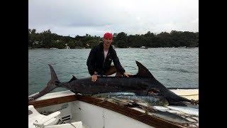 Рыбалка на маврикии марлина в тайланде