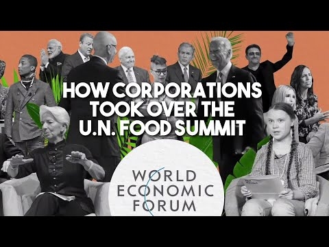 How big corporations and Bill Gates took over the UN food Summit