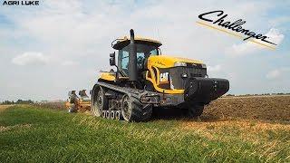 Challenger Caterpillar MT845 & Moro Warrior EXA | Plowing | Aratura