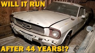 Forgotten 1965 Mustang First Start in 44 Years, Fastback Revival Part 1!