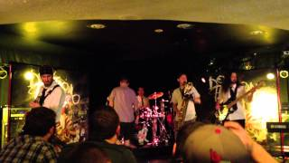 Dog Fashion Disco - Magical Band of Fools Live