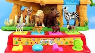 Aprende Animales y Colores Jugando con Agua - Video Educativo de Niños y Bebés!