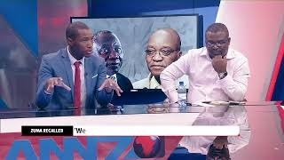Panel unpacks Jacob Zuma recall