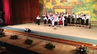 Spectacol aniversar - Scoala Populara de Arte Liviu Borlan Baia Mare - muzica populara 2013, p III