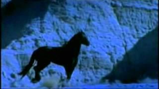 Arabat cavalo. A bela música de amor e ternura.