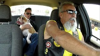 Taxi Ride of the Week: He's slobbering everywhere | Branson Taxi