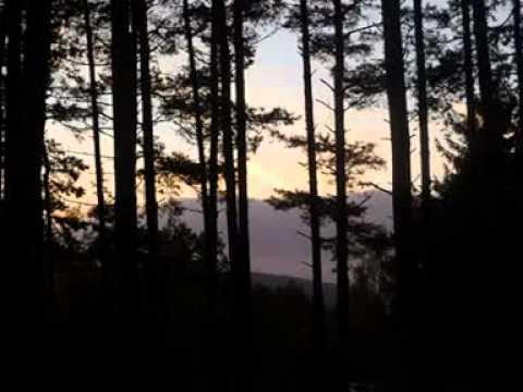 Wabi Ryvola - Loudavý návraty