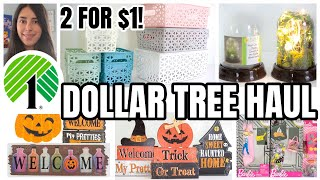 DOLLAR TREE HAUL NEW FINDS 2 FOR $1 ORGANIZATION