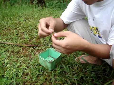Apit tablet mula sa mga worm