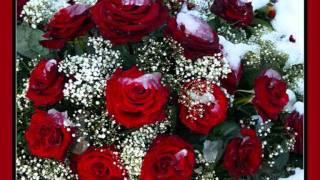 И.Аллегрова-Свадебные цветы.wmv