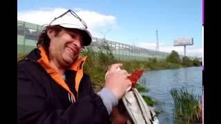 Рыбалка пруды рупасово