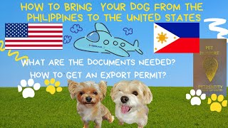 HOW TO BRING YOUR DOG TO AMERICA|DOCUMENTS NEEDED|TRAVELING WITH DOGS INTERNATIONALLY