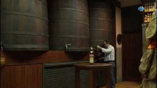 preview picture of video 'vinoteca licoreria   el prat de llobregat   cal pere tarrida'