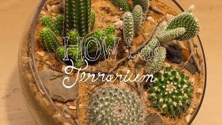 Make a Cactus Terrarium - How To Terrarium ep. 4