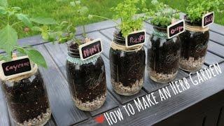 How to: Indoor Herb Garden