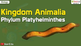 CH05-DIVERSITY IN ANIMAL KINGDOM-PART02-PLATYHELMINTHES
