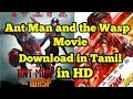 Ant Man and the Wasp Movie in DH | in Tamil
