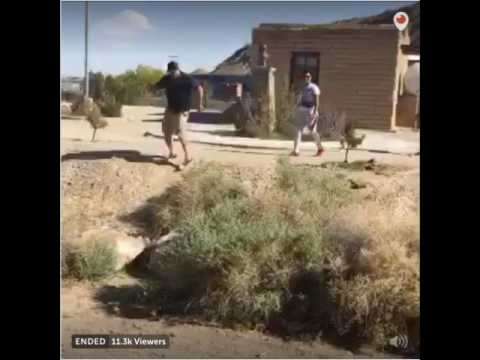 VIDEO. THIS IS WHY WE NEED THE WALL. Mexicans Laugh At How Easy It Is To Cross The Border