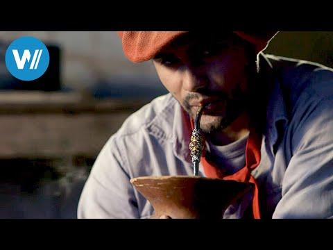 Mate-Tee, die Seele Argentiniens (360° - GEO Reportage)