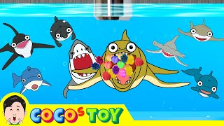 Unexpected visitor appearedㅣcartoon version, sea animals stories for kidsㅣCoCosToy