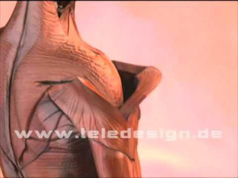 Übungen von Schmerzen in der Brust- und Halswirbelsäule