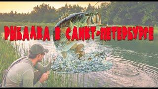 Рыбалка на шуваловском карьере в спб