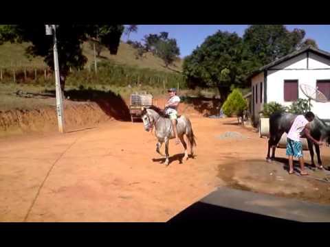 cavalo do delino de afonso claudio ES-BRASIL