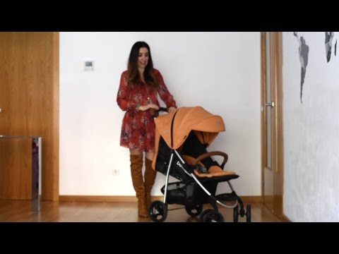 Cochecito para bebés Viva de Bebé Due