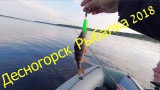 Десногорск рыбалка куда поехать