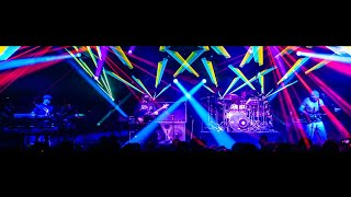 The Disco Biscuits 10/03/09 House Dog Party Favor