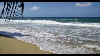 preview picture of video 'Aguada beach video'