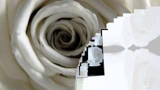 Eros Ramazzotti & Andrea Bocelli -Nel Cuore Lei