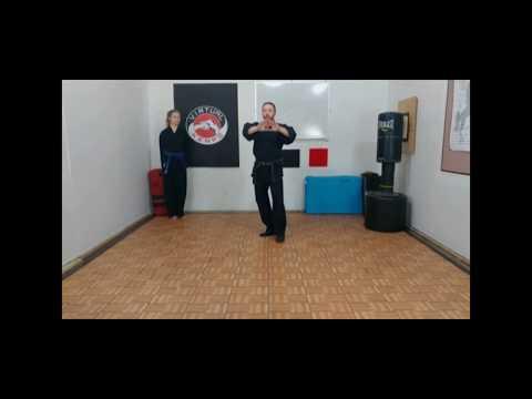 Virtual Kenpo Online Training