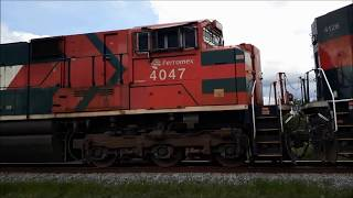 """Suddenly the locomotive of  """"Tren Lol Márquez 4047"""" stopping in front to him"""