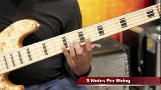 Reed Bass - The Major Scale