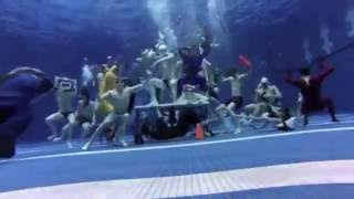 Fire Island Aqua Pool Party 2016