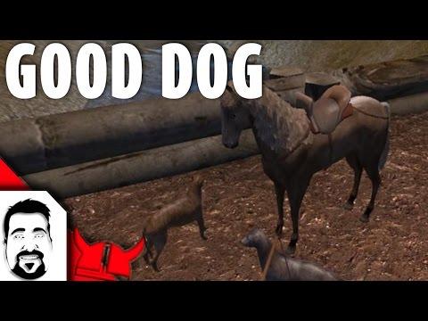 mount and blade warband dog