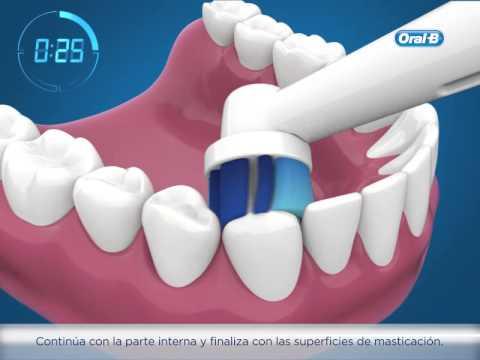 Instrucciones de Oral-B para el cepillado de oscilación-rotación