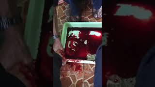 Totok Darah H Wapid Sulaeman