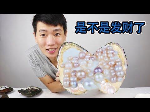 從網上買了6個珍珠蚌,開出來的珍珠能值多少錢?