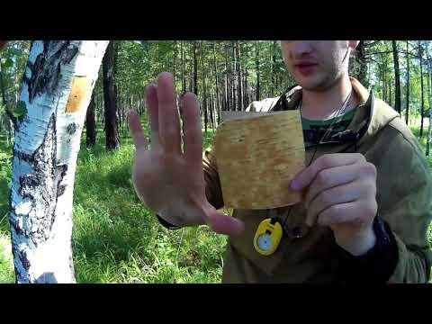 Как сделать ложку за 1 минуту в лесу