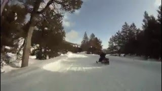 Bear Valley Snowmobile, CA - Alpine Trail Cruise