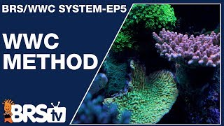 The WWC method to reef keeping - The BRS/WWC System Ep5 - BRStv