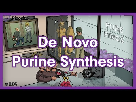 Download Purine Biosynthesis Video 3GP Mp4 FLV HD Mp3