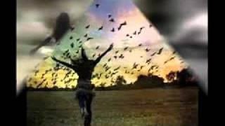 L'uomo sogna di volare
