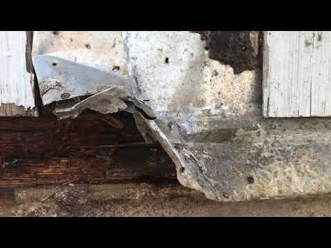 A new homeowner in Howell, NJ recently purchased this home and wanted to renovate it. However, before he could begin his work, he needed to rid himself of the carpenter ant infestation.