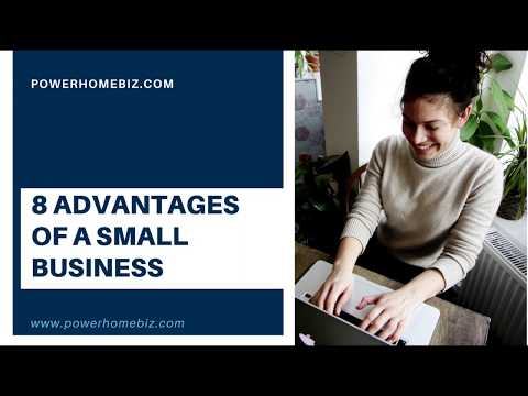 What are the Advantages of a Small Business vs Big Business?