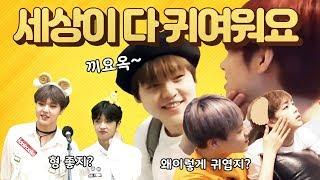 [X1 남도현] #1 형들을 귀여워하는 도현이 (feat.동표 형준 은상)