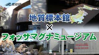 地質の情報を伝える、地質標本館とフォッサマグナミュージアムの動画へ