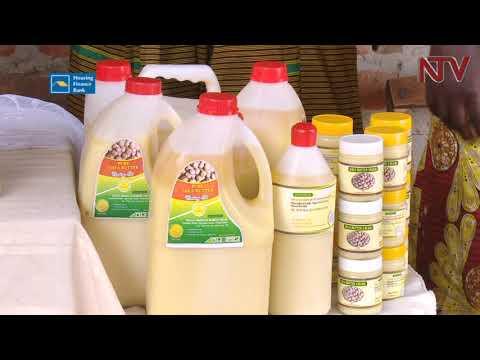Regulatory agencies shield Uganda's Shea market